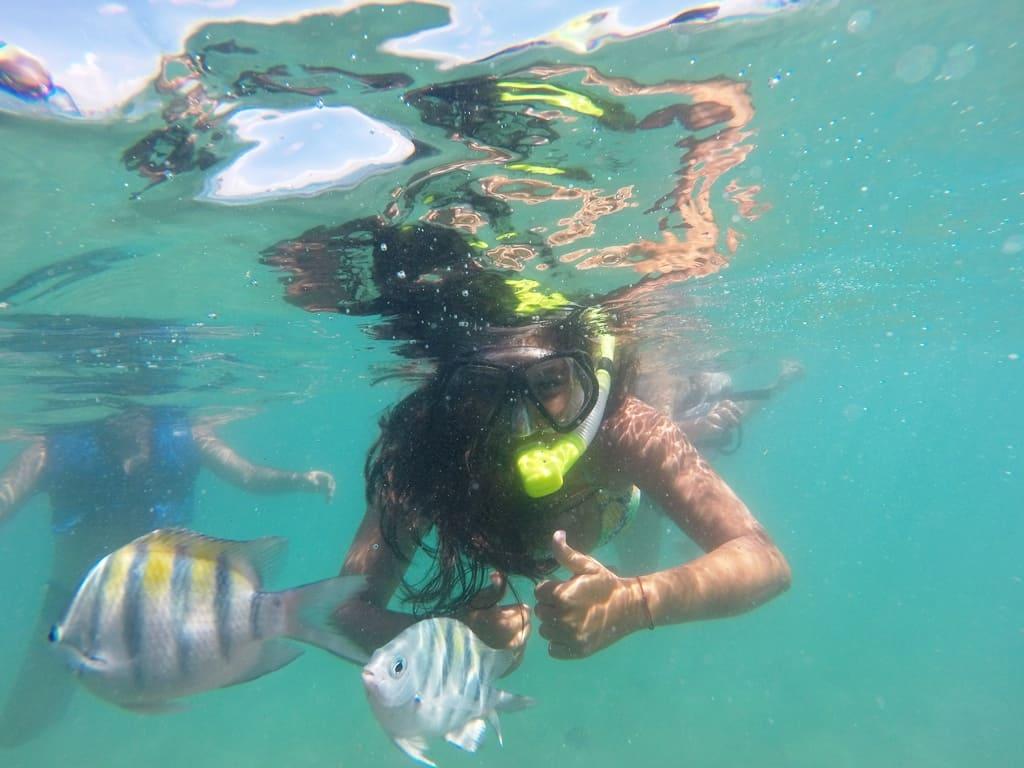 Peixes em Porto de Galinhas, o que fazer em Pernambuco