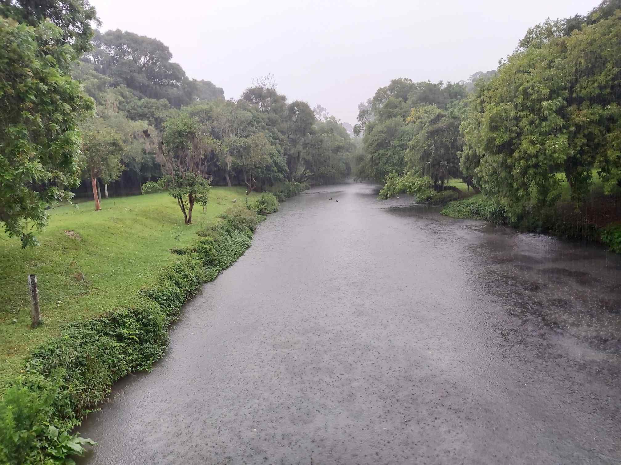 Parque Barigui, em Curitiba